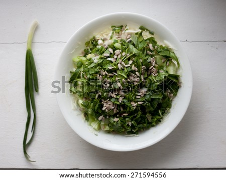 Plate of healthy green garden salad with fresh vegetables and green onion from above
