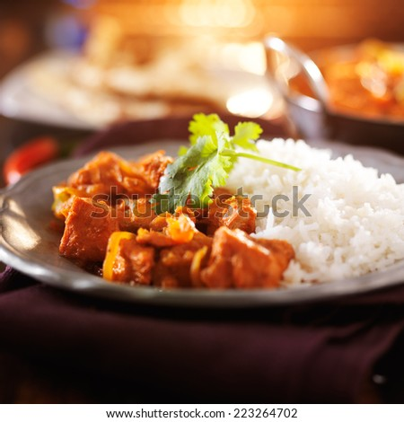 plate of indian chicken vindaloo curry with rice - stock photo