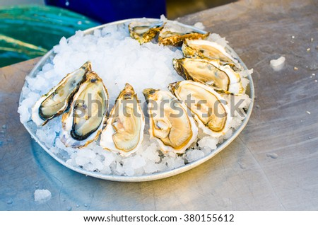 Plate of oysters in a market of Nice, France - stock photo
