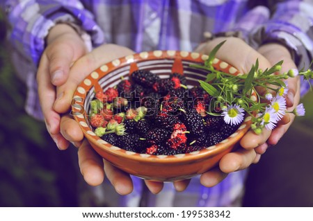 plate with fresh berries in the hands of women - stock photo