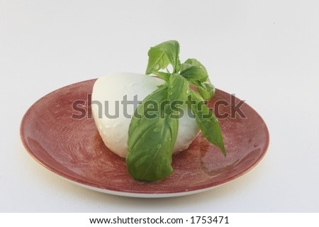 Plate with mozzarella and basil leaf