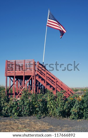 Platform in Sunflower and Cornfield with American Flag - stock photo