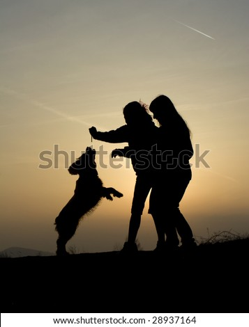 play with the dog in sunset - silhouette