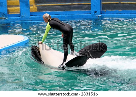 Playing with Orca