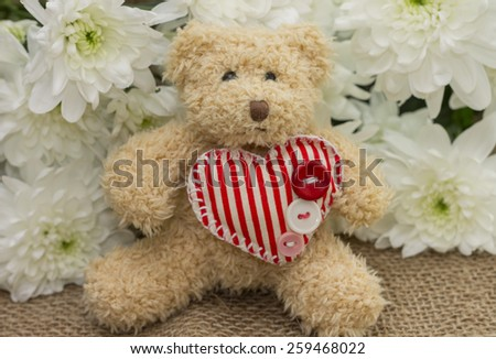 Pleasant surprise to girl on Valentine's Day - cute teddy bear and flowers - stock photo