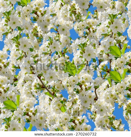 Plenty  natural cherry seamless background. Endless pattern. - stock photo