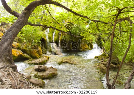 Plitvicka Lake, National Park in Croatia. Beauty small river. - stock photo