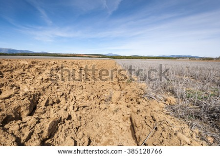 Ploughed and stubble fields in an agricultural landscape in Guadalajara Province, Spain