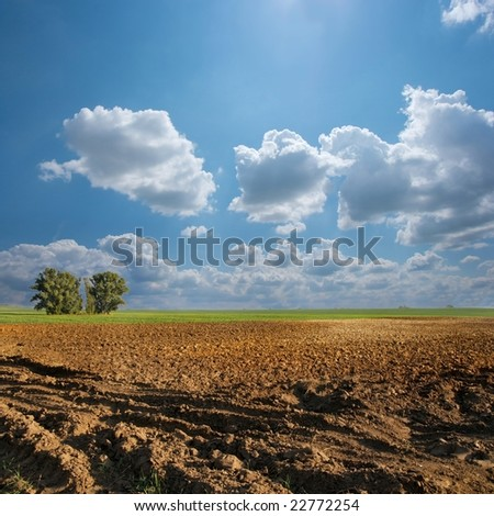 Plowed agricultural field with beautiful  bright sky
