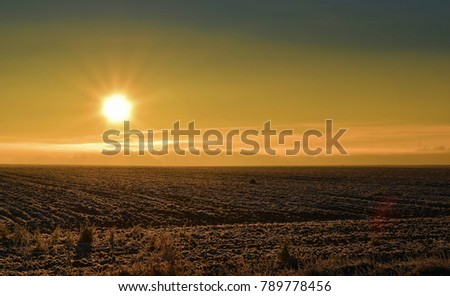 Plowed field in the sun