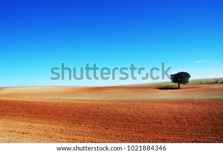 plowed field on Alentejo region, Portugal