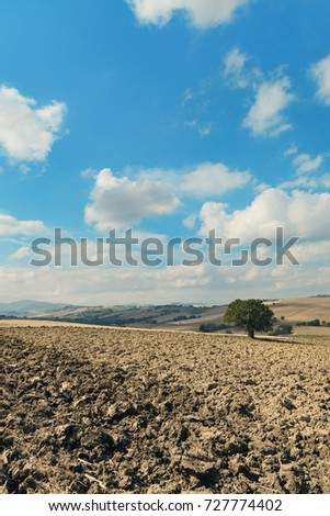 Plowed fields in a day of september, natural landscape