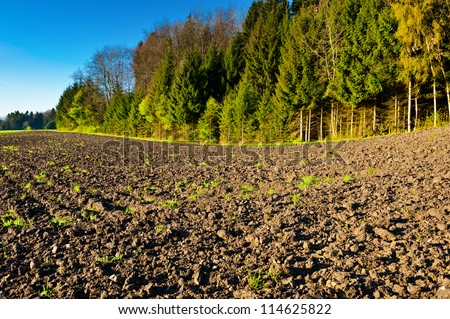 Plowed Fields Surrounded by Forests, Switzerland - stock photo