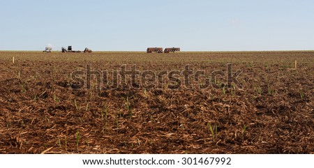 plowed land for sugar cane plantation - stock photo