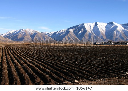 Plowed Rows - stock photo