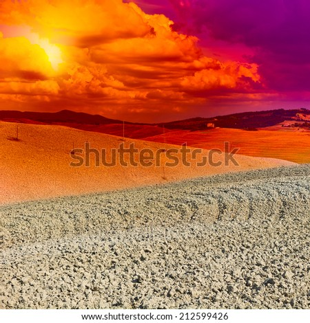 Plowed Sloping Hills of Tuscany at Sunset, Instagram Effect