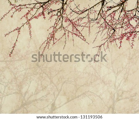 plum blossom on old antique vintage paper background - stock photo