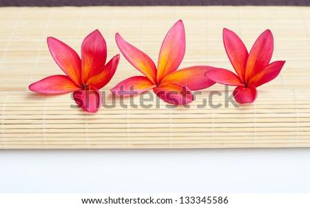 Plumeria flowers arrangement on bamboo mat - stock photo