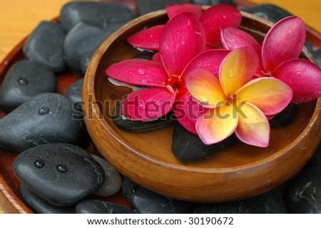 Plumeria in wooden bowl - stock photo