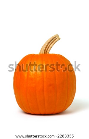 Plump orange color pumpkin with stem over white