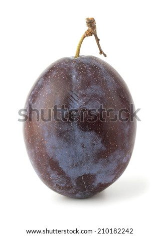 Plums isolated on white background - stock photo
