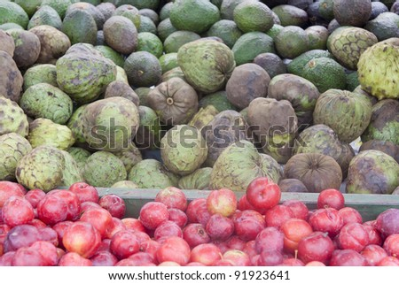 Plums, squashes and avocados on market - San Jose, Costa Rica