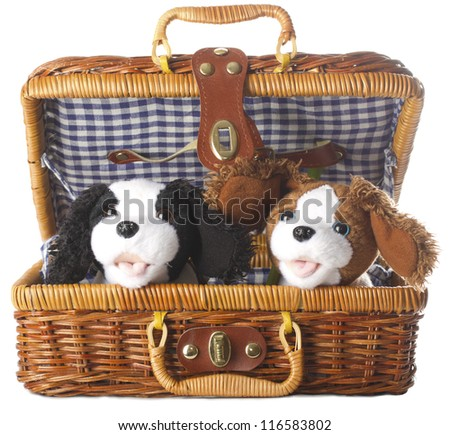 plush dogs in a basket on a white