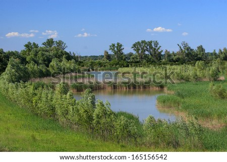 po delta marshes and ponds for water containment boxes expansion wetlands for migratory birds stop - stock photo