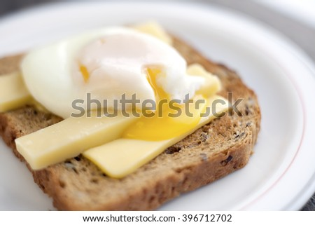 Poached egg on brown bread toast with cheddar cheese.