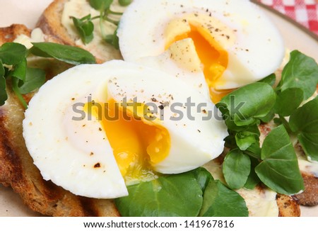 Poached eggs on toast with watercress - stock photo
