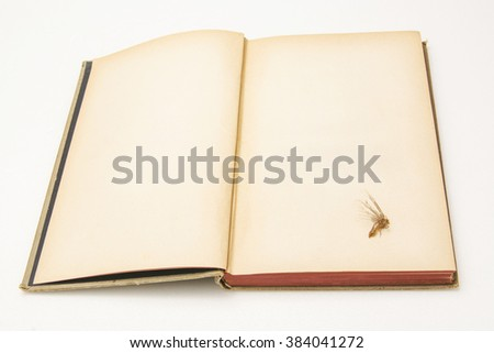 Poetry abstract - stock photo