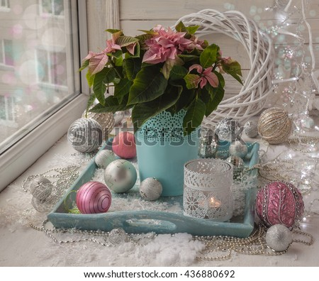 Poinsettia  (Euphorbia pulcherrima) and decorations in the window on Christmas Eve (mass produced) (products of mass production)