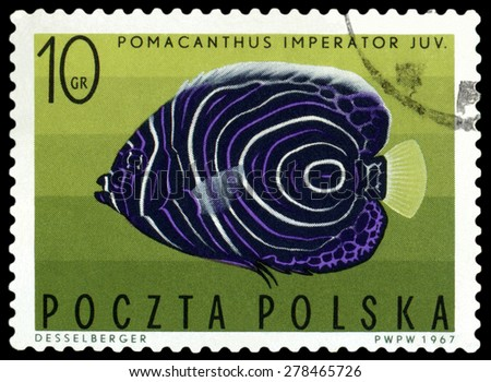 POLAND - CIRCA 1967: A stamp printed in Poland, shows  fish  Imperial Angelfish, from the series Tropical fish, circa 1967  - stock photo