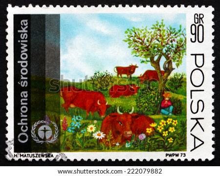 POLAND - CIRCA 1973: a stamp printed in the Poland shows Human Environment Emblem and Grazing Cows, circa 1973 - stock photo