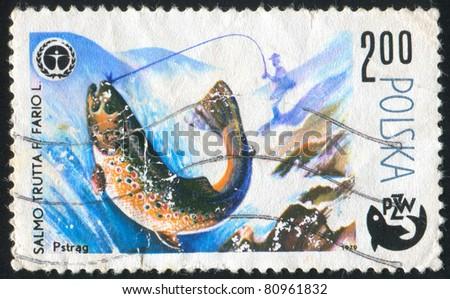 POLAND - CIRCA 1979: stamp printed by Poland, shows fish, circa 1979. - stock photo