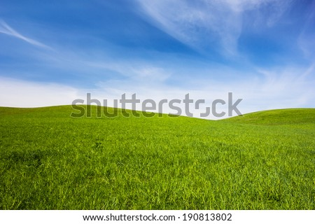 Poland / Grass Field. - stock photo