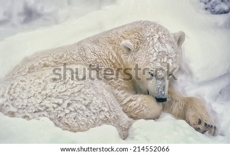 Polar bear in day bed during blizzard, Canadian Arctic - stock photo