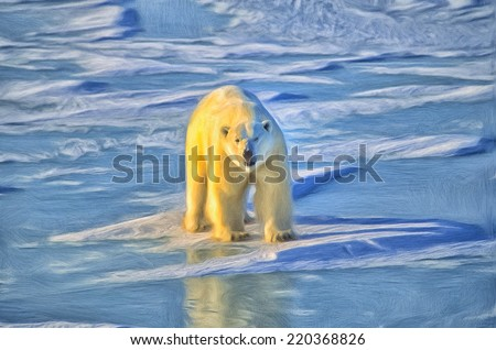 Polar bear on Arctic ice - stock photo