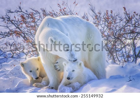Polar bear with cubs, digital oil painting - stock photo