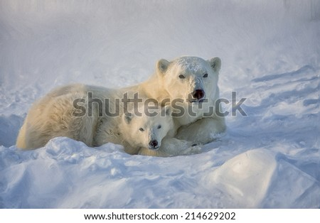 Polar bear with her cub in Canadian Arctic - stock photo