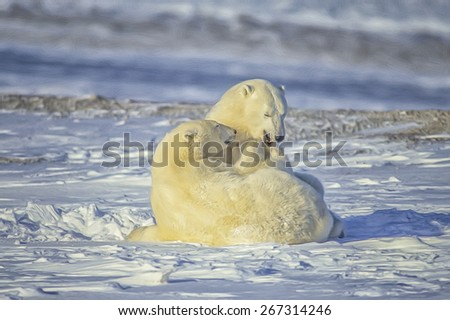 Polar bears play fight,Canadian Arctic. Digital oil painting - stock photo