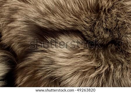 Polar Fox fur. Useful as texture or background - stock photo