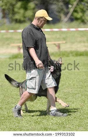 police dog training - stock photo