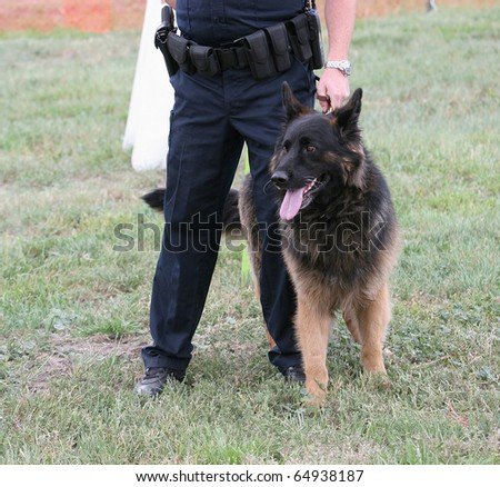 Police dog with human partner at demonstration. - stock photo
