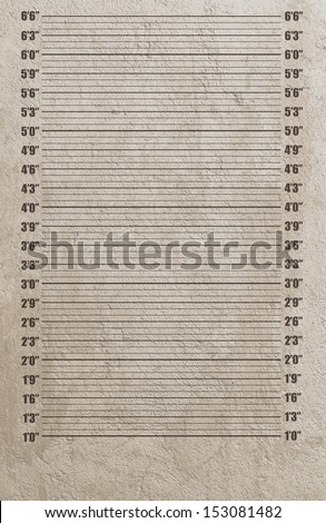 Police mugshot background. Add your photo - stock photo