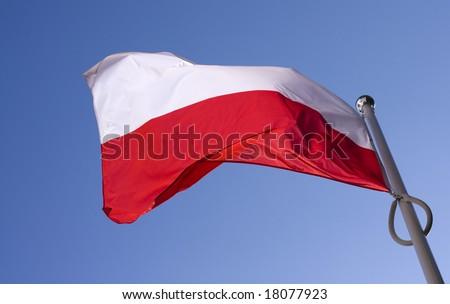 polish flag flying on the wind - stock photo