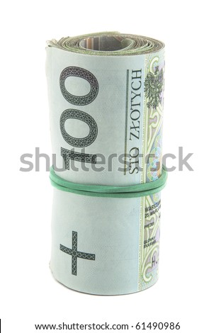 Polish money with clipping path - stock photo