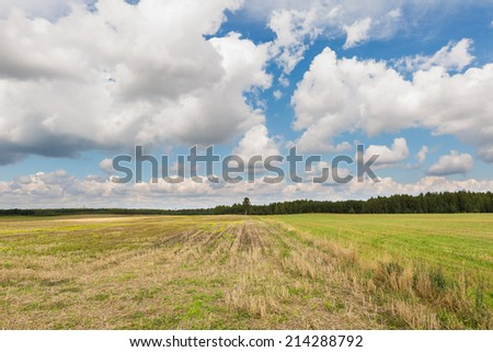 polish rural landscape - stock photo