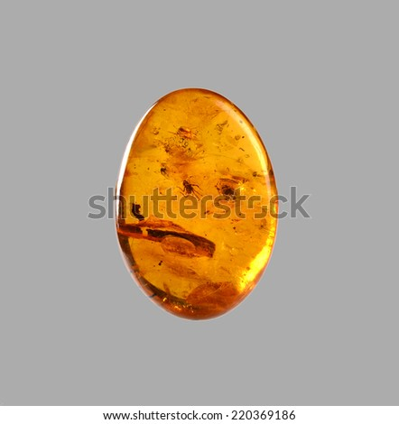 polished amber with spider inside - stock photo