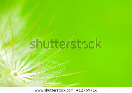 Pollen with a green background, focus blurred - stock photo
